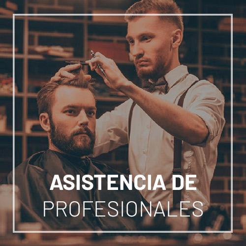 asistencia de profesionales